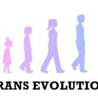 trans-evolution